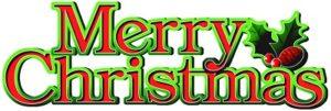 メリークリスマス、今年もあと一週間でさようなら♪